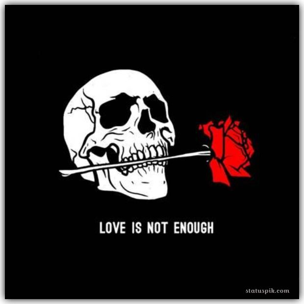 Love is not Enough dp